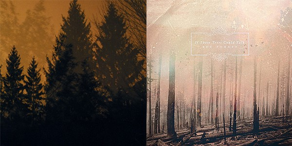 If These Trees Could Talk re-issue streams