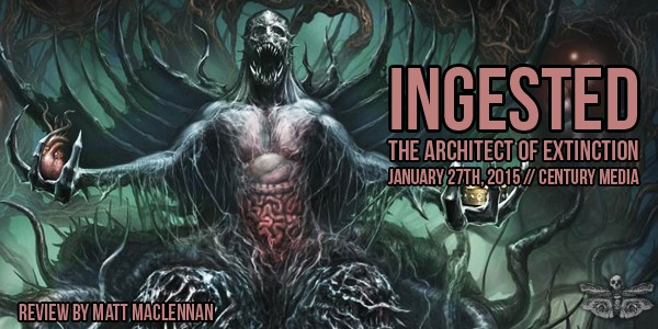 ingested-architect-review