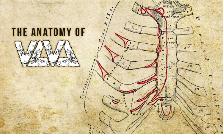 The Anatomy Of: Violent Life, Violent Death - Heavy Blog Is Heavy